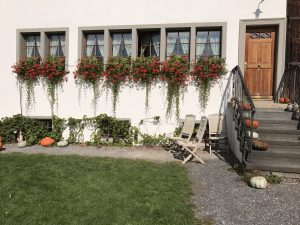Jucker Farm, Seegräben