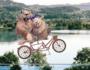 Erlebnisreiche Fahrradtour