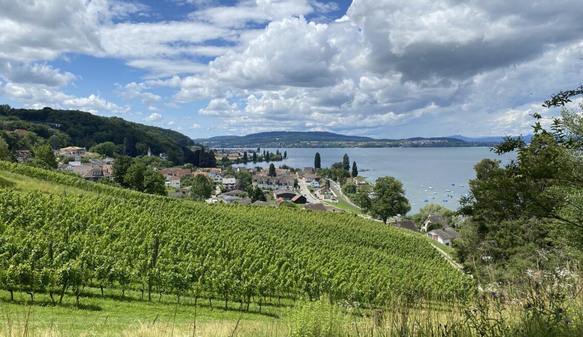 Bike Tour on Lake Constance