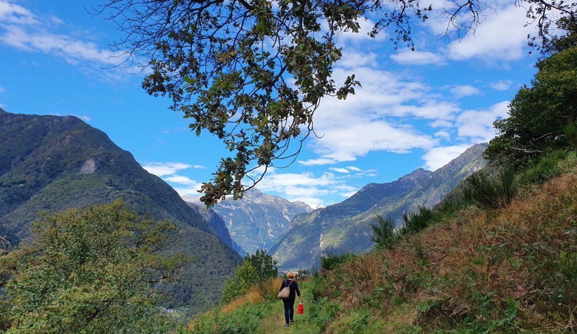 Aussichtswanderung Maggia - Coglio